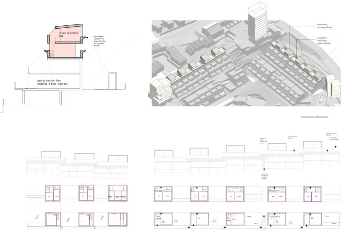 ASH, Site 16. Roof Extensions: Section and Plan